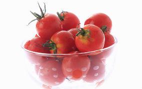 効果的なトマトの選び方
