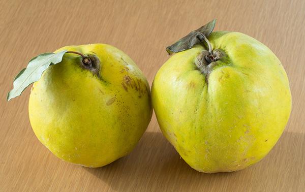 花梨種や花梨シロップで冬支度を始めよう