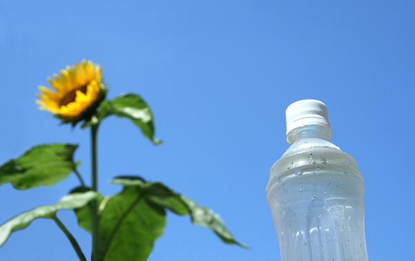 夏の上手な水分補給法とは?