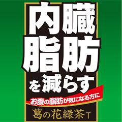 葛の花緑茶T