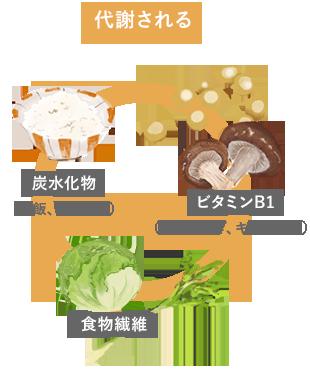 炭水化物、ビタミンB1、食物繊維