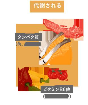 タンパク質、ビタミンB6他