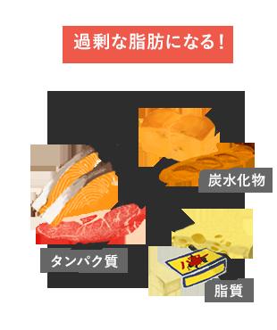 タンパク質、炭水化物、脂質