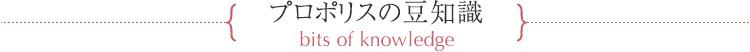 プロポリスの豆知識