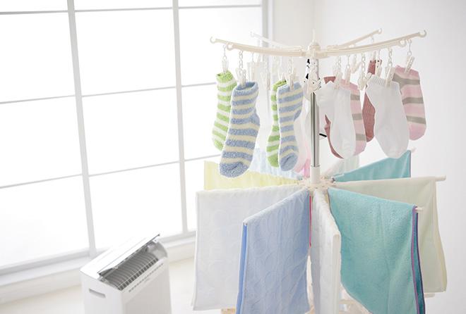 服からカビ臭なんて幻滅……部屋干し臭を撃退せよ!