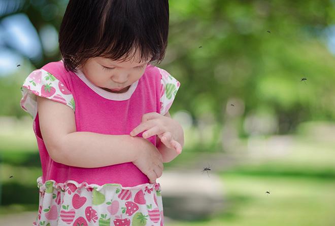 子供や肌が弱い人でも使えて、よく効く虫よけはコレ!