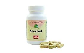 Olive Leaf(オリーブリーフ)(HBCフナト)