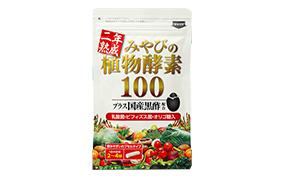 二年熟成 みやびの植物酵素100(みやび)